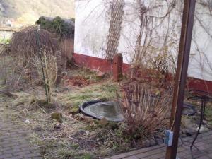 Garten vorher1